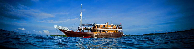 Maghogany Booking Schedule Sumatran Surfariis