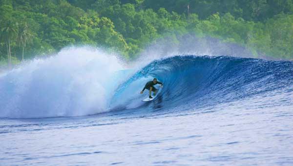 Sumatran Surfariis Mentawais